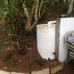 "Buried Rain Barrel With 2"" PVC Downspouts"